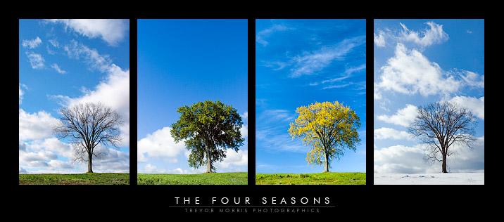 TheFourSeasons.jpg